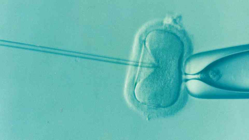 Emma holds the record for the longest frozen human embryo to be born.