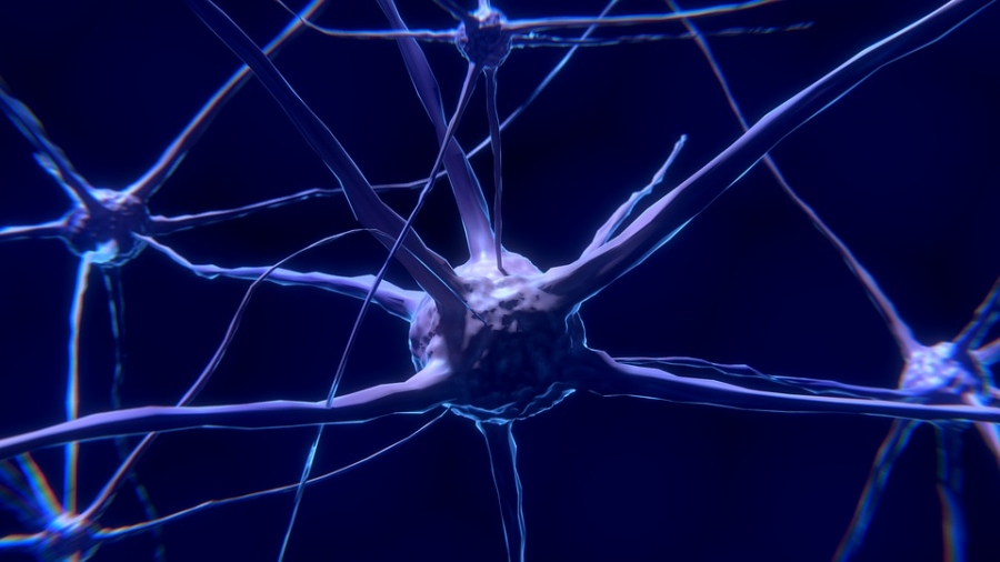 Aim of this therapy is to grow new nerve cell & encourage them to connect to each other