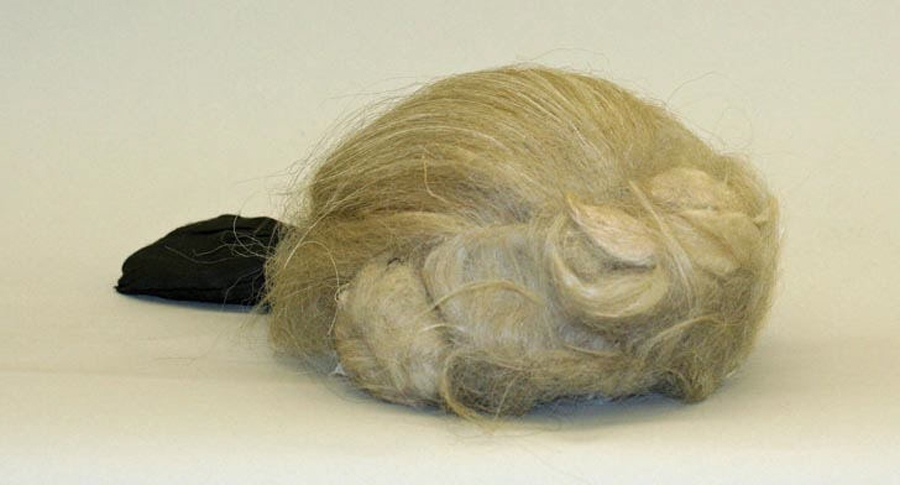 A wig from 18th century